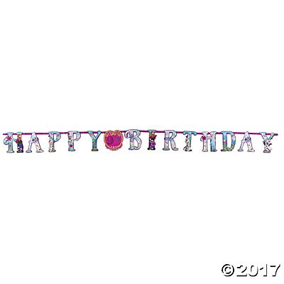Disney's Frozen Add-an-Age Birthday Paper - Banner Frozen