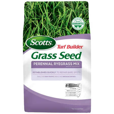 Scotts Turf Builder Grass Seed Perennial Ryegrass Mix, 3