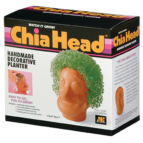 As Seen on TV Chia Pets Chia Guy