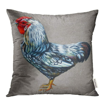 CMFUN Silver Alpha Rooster American Drawing on Vintage Silver Male Cock Chicken Chickens Pillow Case Pillow Cover 16x16 inch Throw Pillow - Alpha Throw