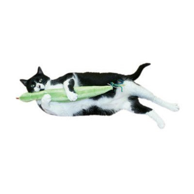 Imperial Cat 01128 Slither n Snake Catnip Toy