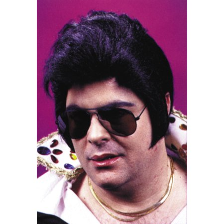 Rock N' Roll Stars Wig Adult Halloween Accessory