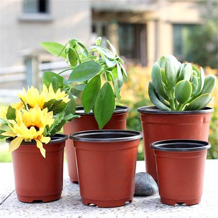 Moaere 100Pcs Plastic Round Succulent Plant Pot Cactus Flower Pot Seedlings Container ()
