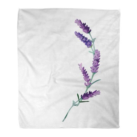 SIDONKU Flannel Throw Blanket Pink Hand Beige Drawing Lavender Flower Colorful Drawn Purple Soft for Bed Sofa and Couch 50x60