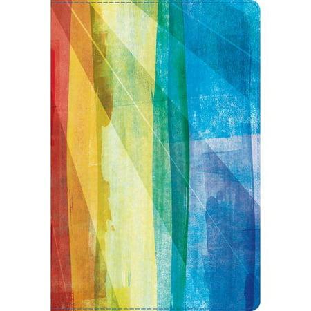 Biblia De Estudio Arco Iris   Rainbow Study Bible  Reina Valera 1960  Multicolor  S Mil Piel  Leathertouch