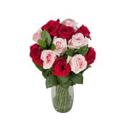 Love You More Rose Bouquet50 cm - Fresh Cut - 1 Pack