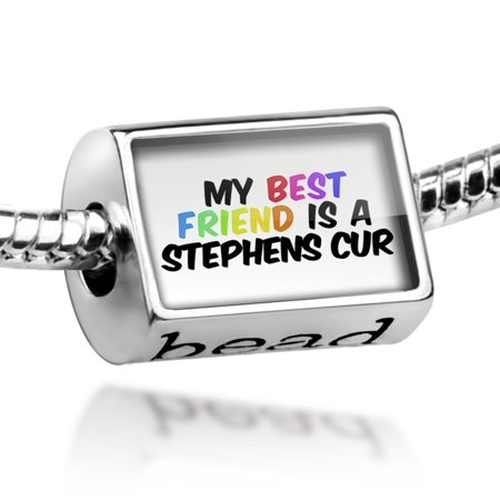 Bead My best Friend a Stephens Cur Dog from United States Charm Fits All European (Stephen Lynch Best Friends)