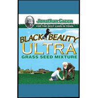SEED BLACK BEAUTY ULTRA 25LB