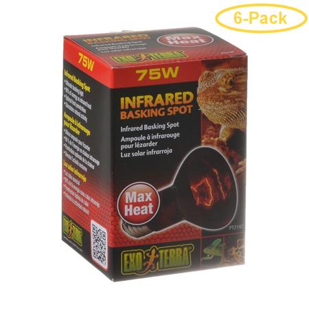 Exo-Terra Heat Glo Infrared Heat Lamp 75 Watts - Pack of 6