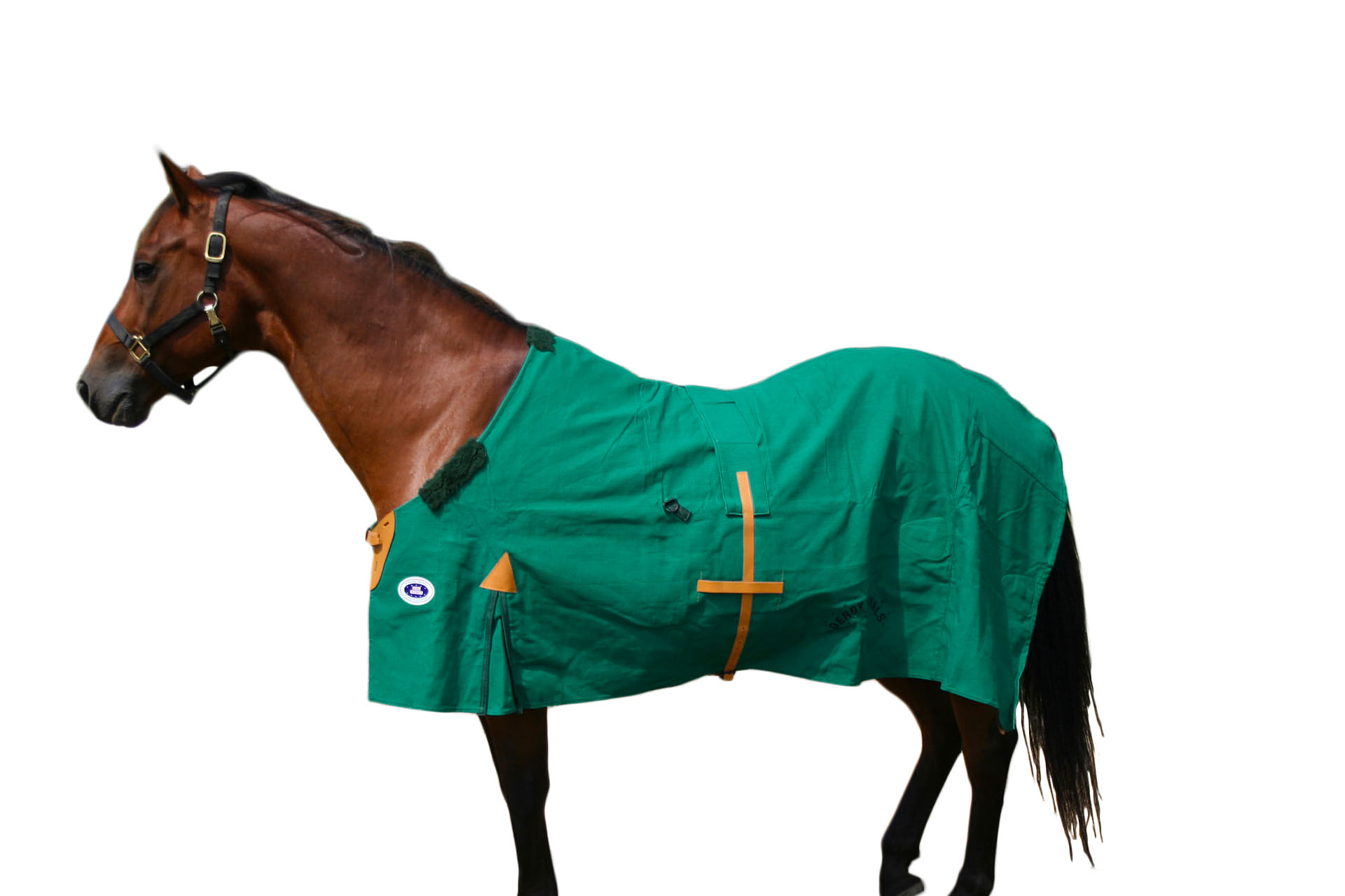 Winter Horse Blankets >> New Zealand Water Repellent Winter Horse Blankets By Derby Originals