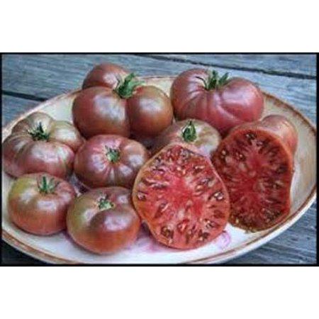 Tomato Cherokee Purple Great Garden Heirloom Vegetable 50