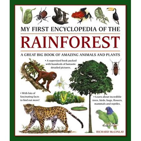My First Encylopedia of the Rainforest: A Great Big Book of Amazing Animals and - Rainforest Animal Patterns