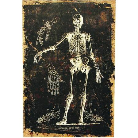 Skeleton Canvas without Frame Halloween Decoration - Halloween Frans