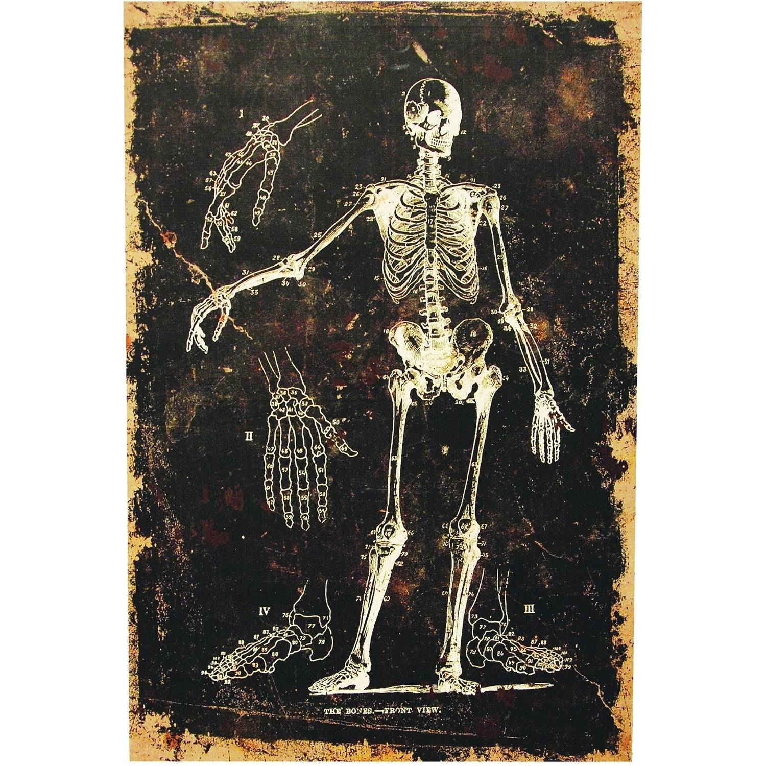 Skeleton Canvas without Frame Halloween Decoration