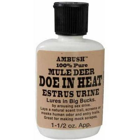 Moccasin Joe Mule Deer Doe in Heat