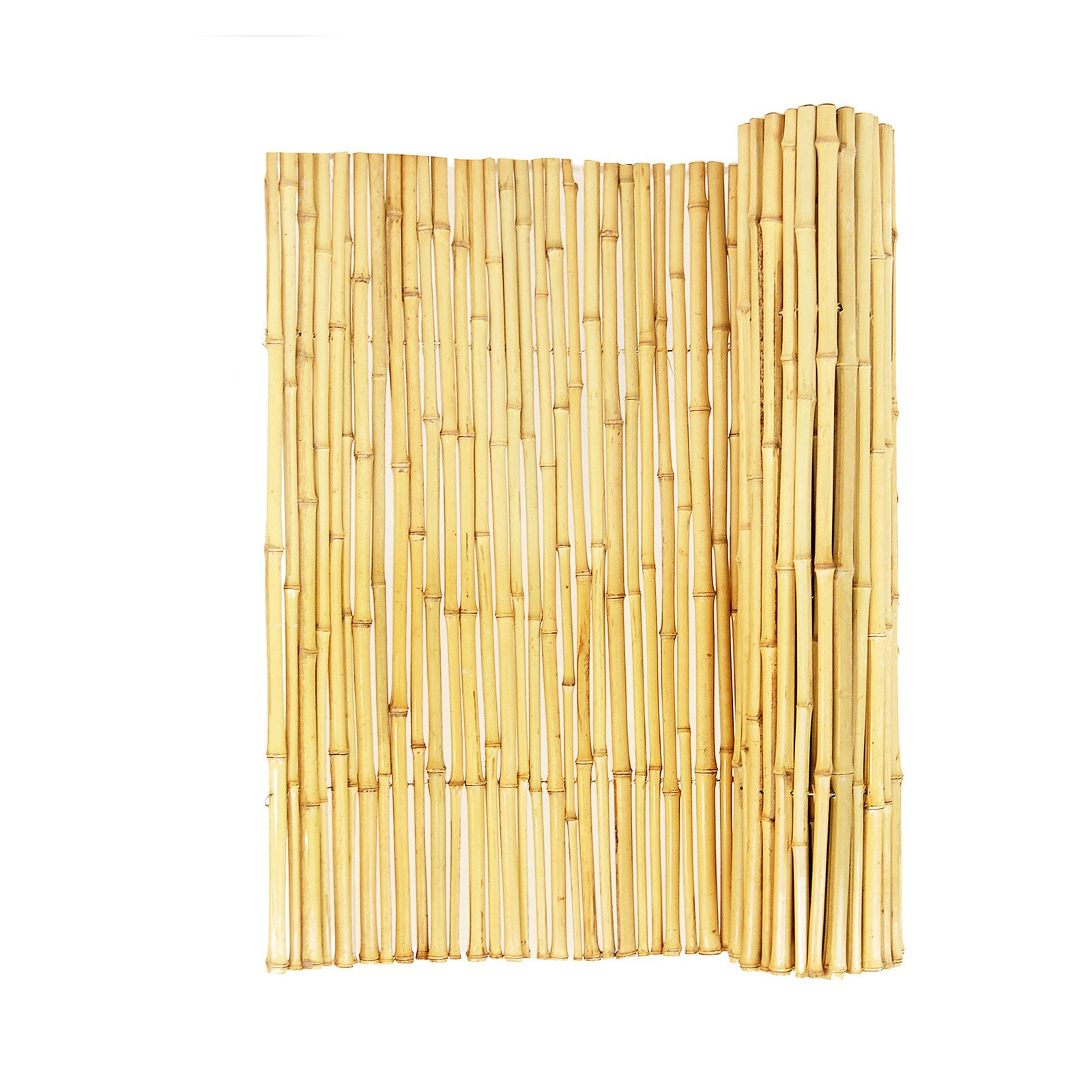 Forever Bamboo 3 4 in. Natural Rolled Bamboo Fence by