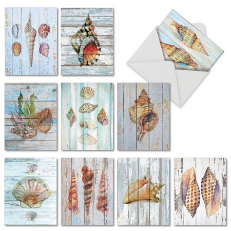 AM6118OCB-B1x10  All Occasions Greeting Card 'Seashell Driftwood' with Envelope by (Card Seashell)