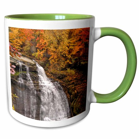 - 3dRose Brandywine Falls in Cuyahoga Valley National Park - Two Tone Green Mug, 11-ounce
