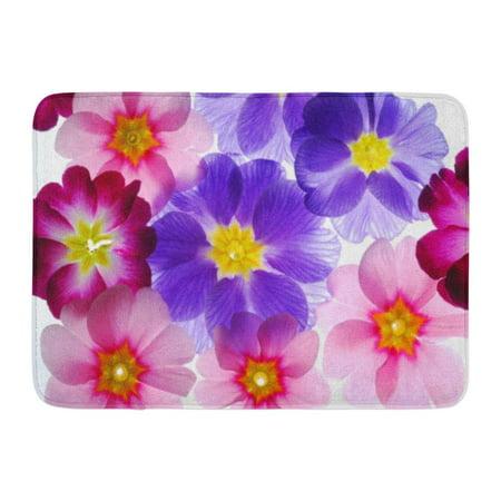 GODPOK Beauty Red Primrose Primula Flowers Yellow Beautiful Best Rug Doormat Bath Mat 23.6x15.7