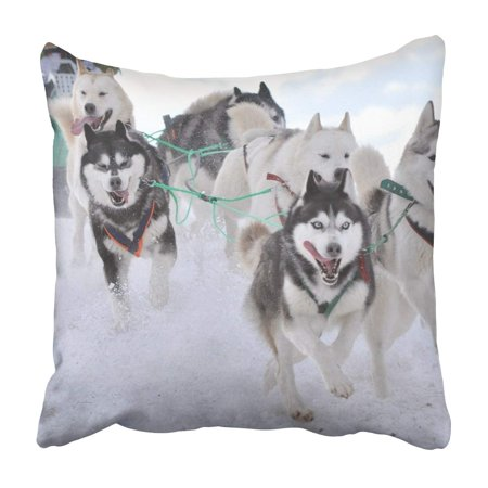 BOSDECO sled dog race on snow in winter Pillowcase Throw Pillow Cover Case 18x18 inches - image 1 de 2