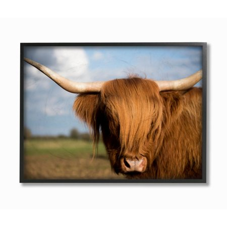 Stupell Industries Cow in Pasture Animal Landscape Photo Framed Giclee Texturized Art by Villager Jim