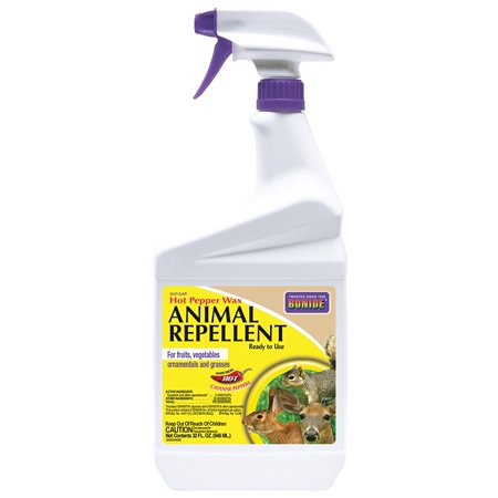 Bonide Products Inc P-Hot Pepper Wax Animal Repellent Ready To Use 32 (Peppers Animal Repellant)