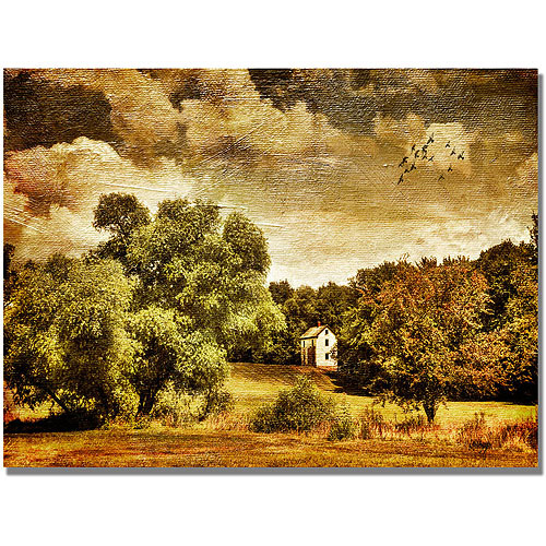 "Trademark Fine Art ""Old Farm House"" Canvas Wall Art by Lois Bryan"