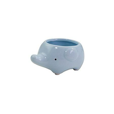 Cute Elephant Flower Pot -- Mini Ceramic Planter for Succulents -- Blue - Ceramic Flower
