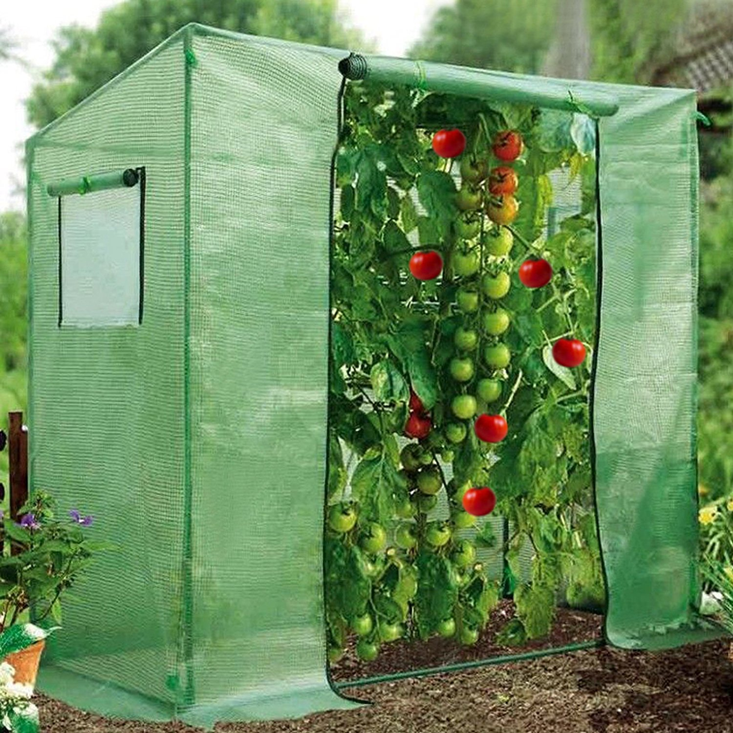 7' x3' x6' Tomato Walking-in Greenhouse Outdoor Plant Gardening Green House