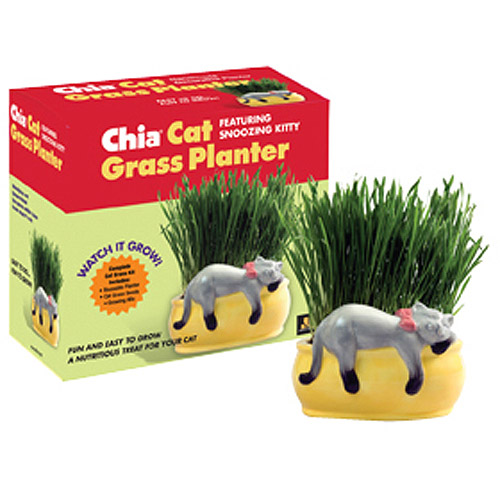 As Seen on TV Chia Cat Grass Snoozing Kitty