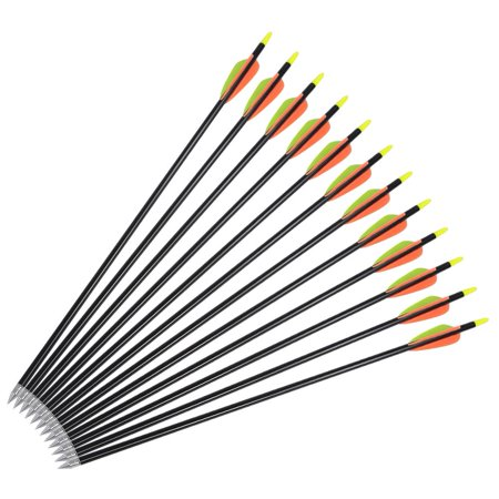 Dilwe 12pcs 20inch Aluminium Alloy Arrow Bow and Arrow for