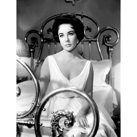 Cat On A Hot Tin Roof Photo Print (Cat On A Hot Tin Roof Character Analysis)