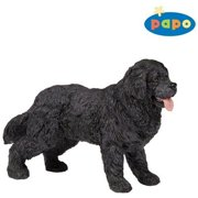 Newfoundland Terrier by Papo - PP54018
