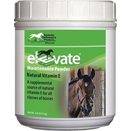 Performance Horse Feed (KENTUCKY PERFORMANCE PROD 044097 Elevate Maintenance Powder Supplement For Horses, 2 lb )