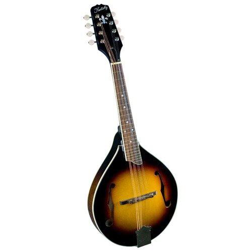 Saga Kentucky A-Model Mandolin with Solid Flamed Back