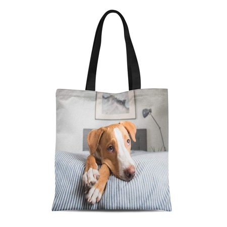 ASHLEIGH Canvas Tote Bag Gray Young Fawn Mixed Breed Puppy Laying on Striped Durable Reusable Shopping Shoulder Grocery
