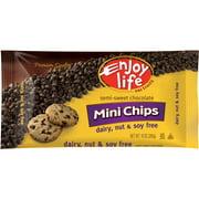 Enjoy Life Semi-Sweet Mini Chocolate Chips, 10 oz (Pack of 12)