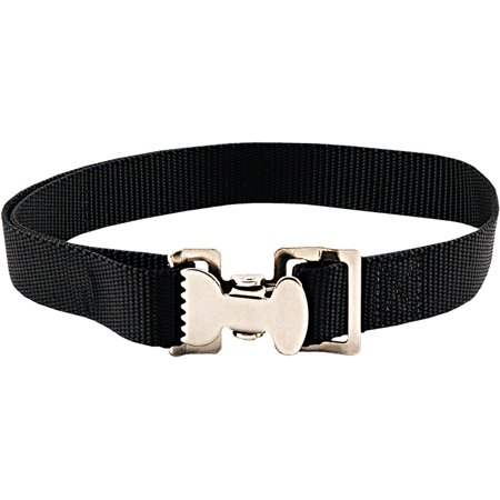 Felt Clip (Country Brook Design® Alligator Clip Nylon Tie Down Straps - Black - 6 Feet )