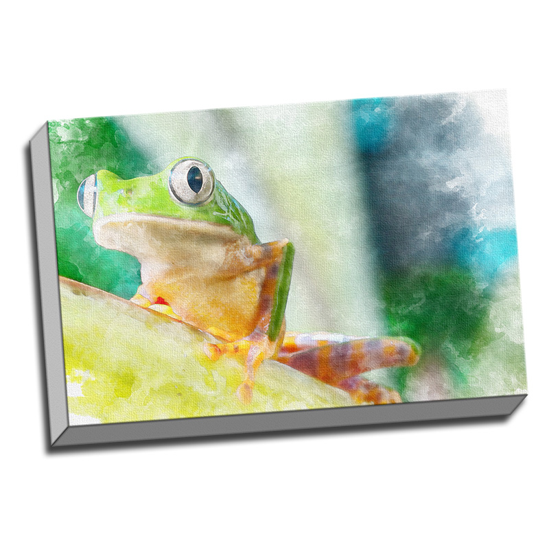 Frog Faux Watercolor Printed on Canvas Stretched Framed Ready to Hang