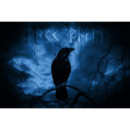 Moonlit Bird (Canvas Print Raven Night Moonlight Raven Bird Dark Mystical Stretched Canvas 10 x 14 )