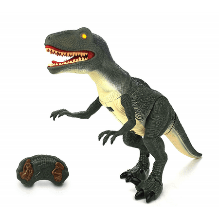 Dinosaur Planet Raptor Remote Controlled RC Battery Operated Toy Velociraptor Figure w/Shaking Head, Walking Movement, Light Up Eyes & Sounds - Dinosaur Animal Planet