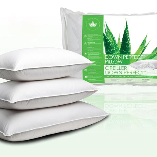 Canadian Down and Feather Company Down Perfect Pillow Standard - Firm (37 oz)