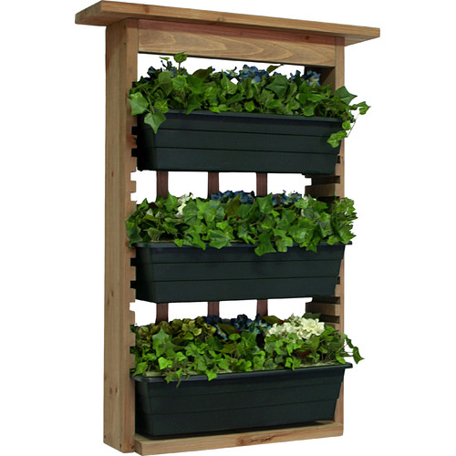 Algreen Wood Wall Planter by Algreen Products