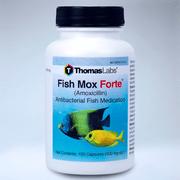 Thomas Labs Fish Mox Forte (Amoxicillin) Antibacterial Fish Medication, 100 ct. (500 mg. ea.)