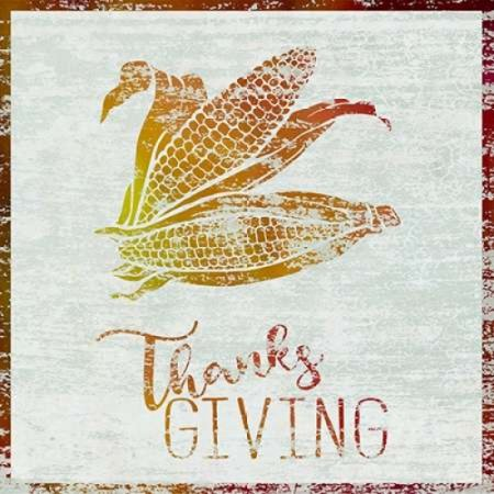Thanksgiving Corn Rolled Canvas Art - Cora Niele (24 x 24) - Corn Roll