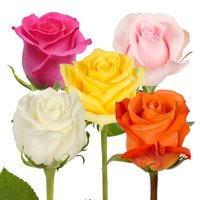 "Natural Fresh Flowers - Assorted Color Roses, 20"", 50 Stems"