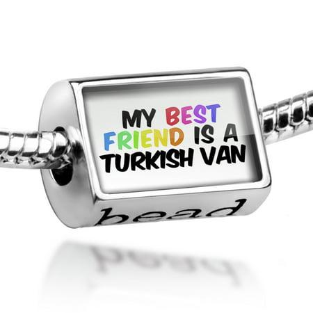 Bead My best Friend a Turkish Van Cat from Turkey Charm Fits All European