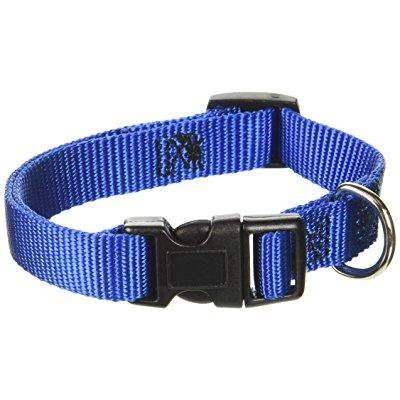 guardian gear nylon adjustable dog collar with plastic buckles, fits necks 10 to 16, blue