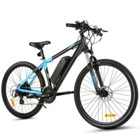 27.5inch 350W Cargo Electric Bicycle