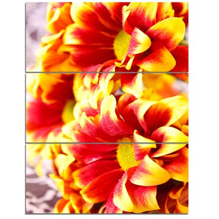 Red Flower Photo - Design Art 'Red Yellow Flower Background Photo' 3 Piece Photographic Print on Wrapped Canvas Set